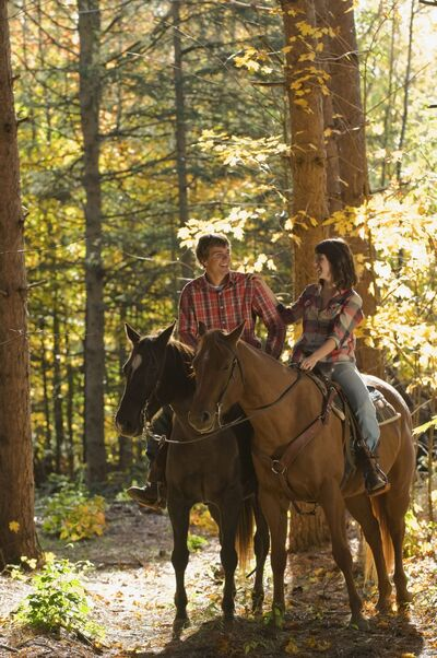 Ride in the light of sunrise or sunset on a romantic horse trail in