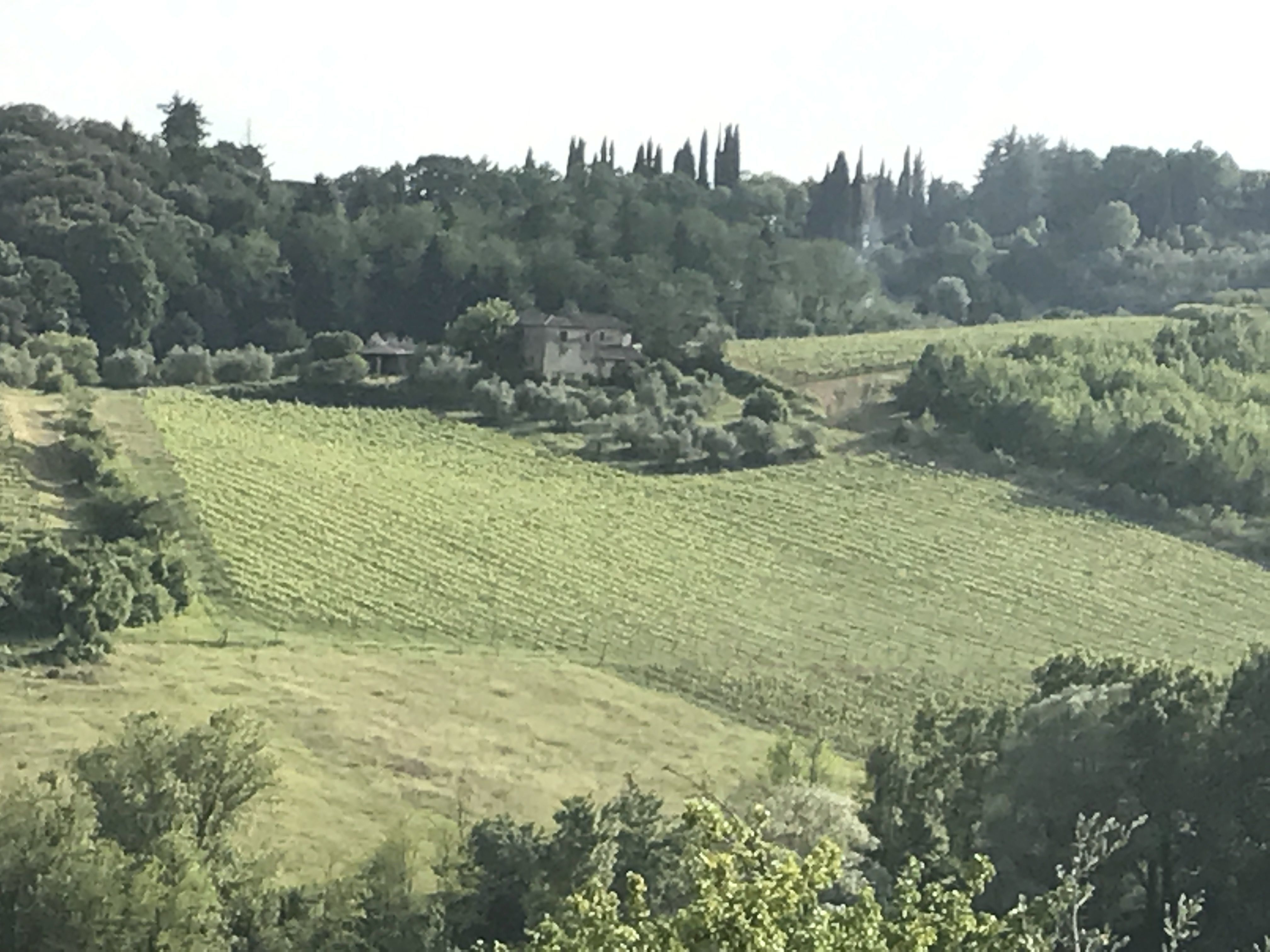Tuscany Villa Reviews And Testimonials Submitted By Guests Results