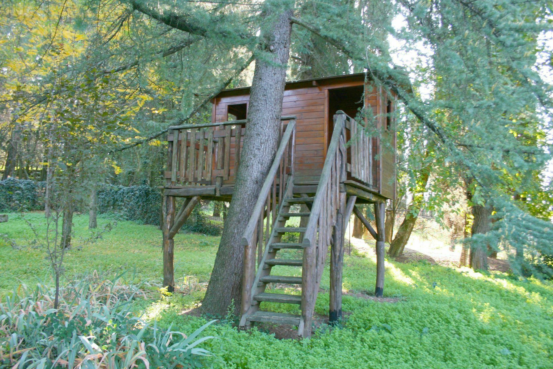 Olivo casa vacanze con 6 posti letto in 4 camere for Branson cabin rentals 4 camere da letto